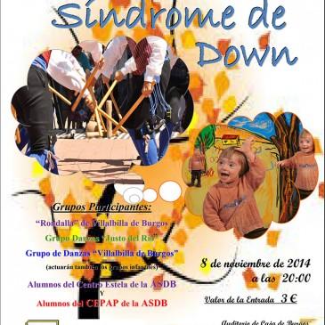 Festival benéfico Sindrome de Down (8 de noviembre de 2014)